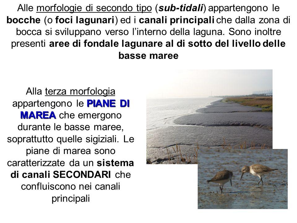 Alle morfologie di secondo tipo (sub-tidali) appartengono le bocche (o foci lagunari) ed i canali principali che dalla zona di bocca si sviluppano ver