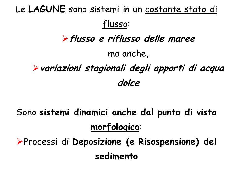 Le LAGUNE sono sistemi in un costante stato di flusso:  flusso e riflusso delle maree ma anche,  variazioni stagionali degli apporti di acqua dolce