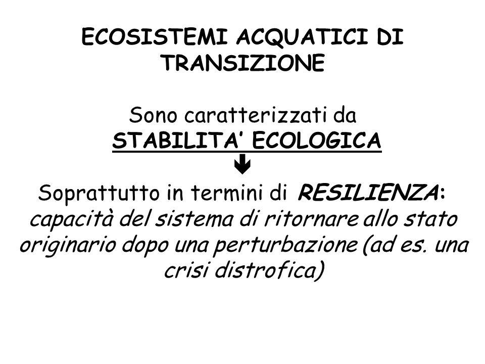 ECOSISTEMI ACQUATICI DI TRANSIZIONE Sono caratterizzati da STABILITA' ECOLOGICA  Soprattutto in termini di RESILIENZA: capacità del sistema di ritorn