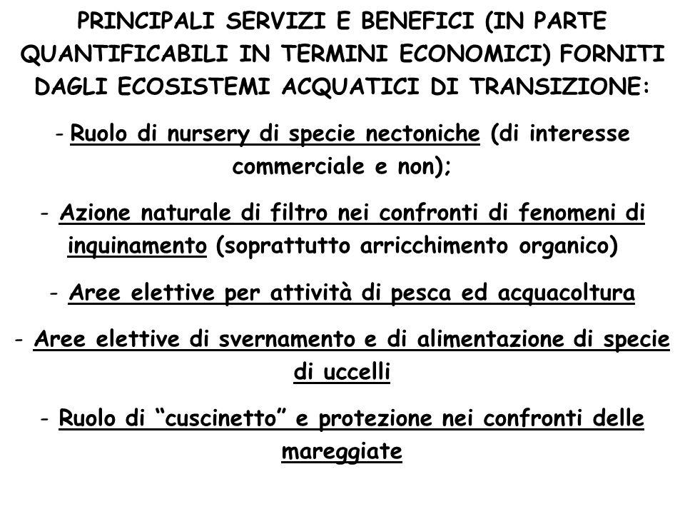 PRINCIPALI SERVIZI E BENEFICI (IN PARTE QUANTIFICABILI IN TERMINI ECONOMICI) FORNITI DAGLI ECOSISTEMI ACQUATICI DI TRANSIZIONE: - Ruolo di nursery di
