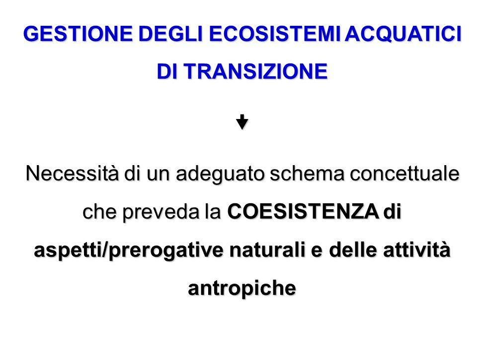 GESTIONE DEGLI ECOSISTEMI ACQUATICI DI TRANSIZIONE  Necessità di un adeguato schema concettuale che preveda la COESISTENZA di aspetti/prerogative nat