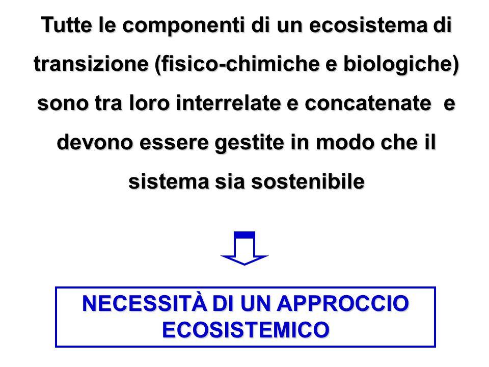 Tutte le componenti di un ecosistema di transizione (fisico-chimiche e biologiche) sono tra loro interrelate e concatenate e devono essere gestite in