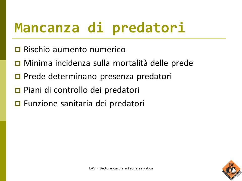 LAV - Settore caccia e fauna selvatica Mancanza di predatori  Rischio aumento numerico  Minima incidenza sulla mortalità delle prede  Prede determi