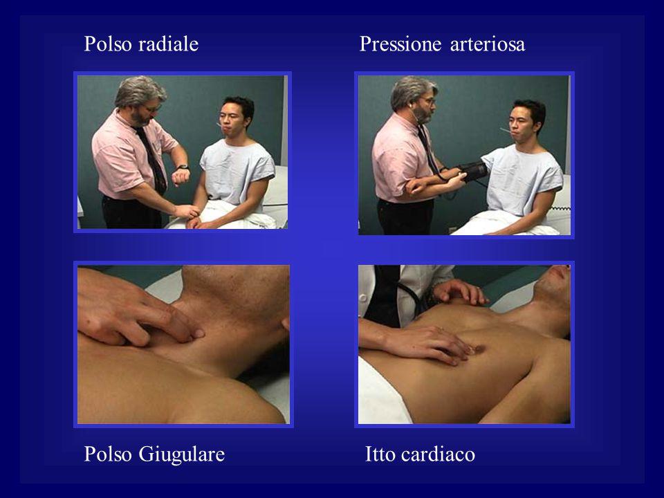 Polso radiale Polso GiugulareItto cardiaco Pressione arteriosa