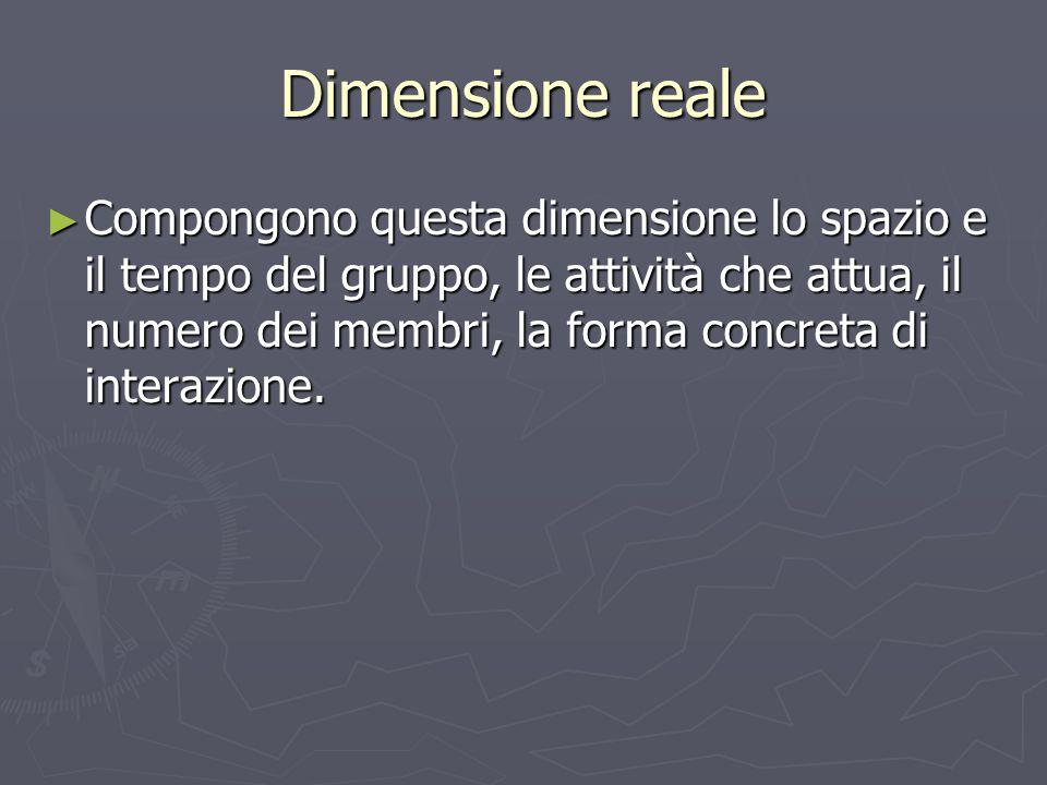 Dimensione reale ► Compongono questa dimensione lo spazio e il tempo del gruppo, le attività che attua, il numero dei membri, la forma concreta di int