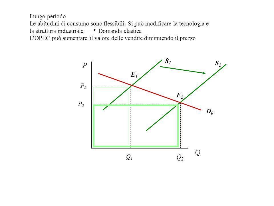 Q2Q2 S2S2 P Q P2P2 E2E2 D0D0 S1S1 E1E1 P1P1 Q1Q1 Lungo periodo Le abitudini di consumo sono flessibili.