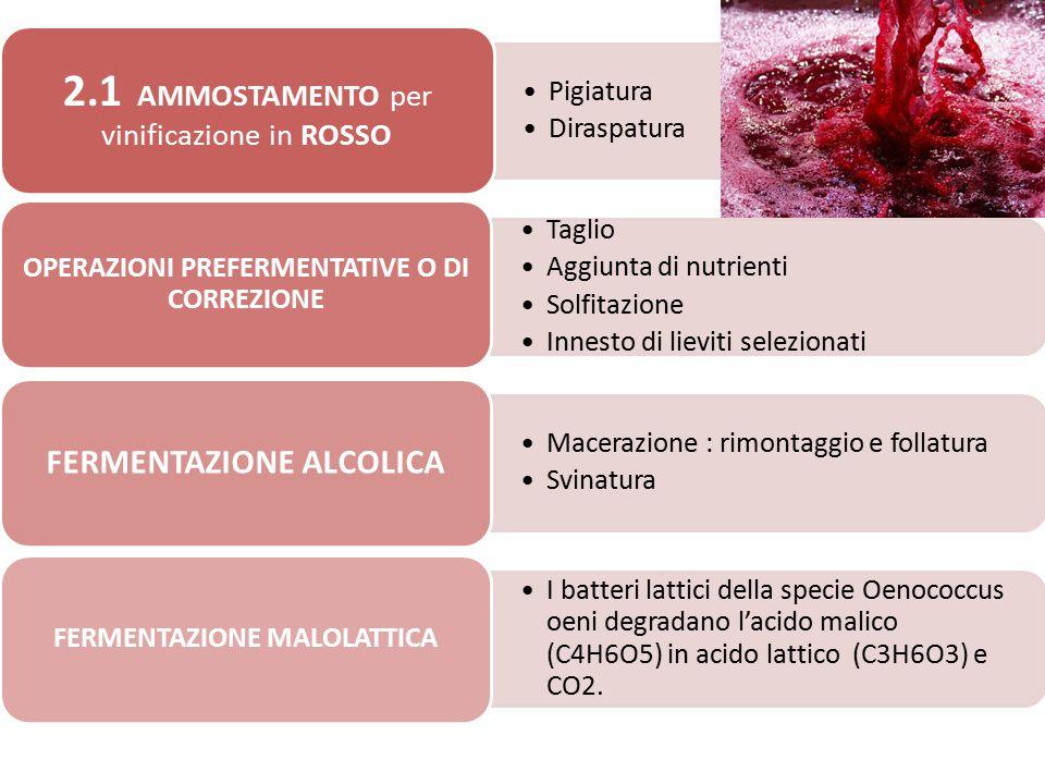 Pigiatura Diraspatura 2.1 AMMOSTAMENTO per vinificazione in ROSSO Taglio Aggiunta di nutrienti Solfitazione Innesto di lieviti selezionati OPERAZIONI
