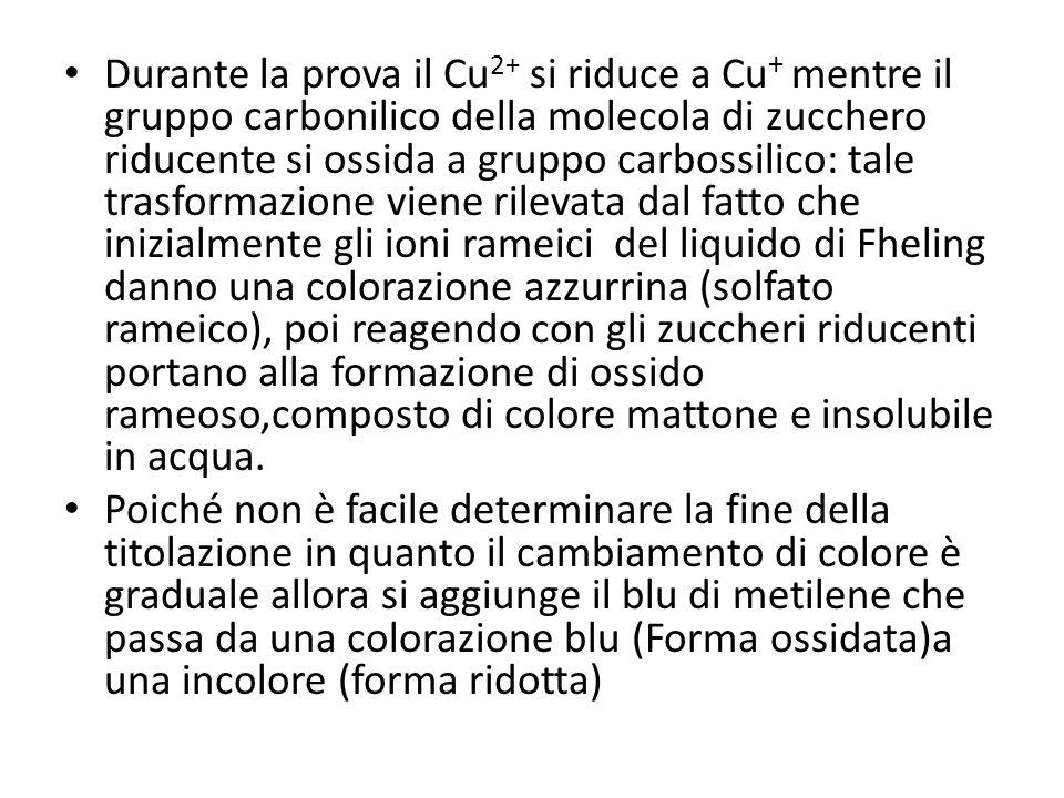 Durante la prova il Cu 2+ si riduce a Cu + mentre il gruppo carbonilico della molecola di zucchero riducente si ossida a gruppo carbossilico: tale tra