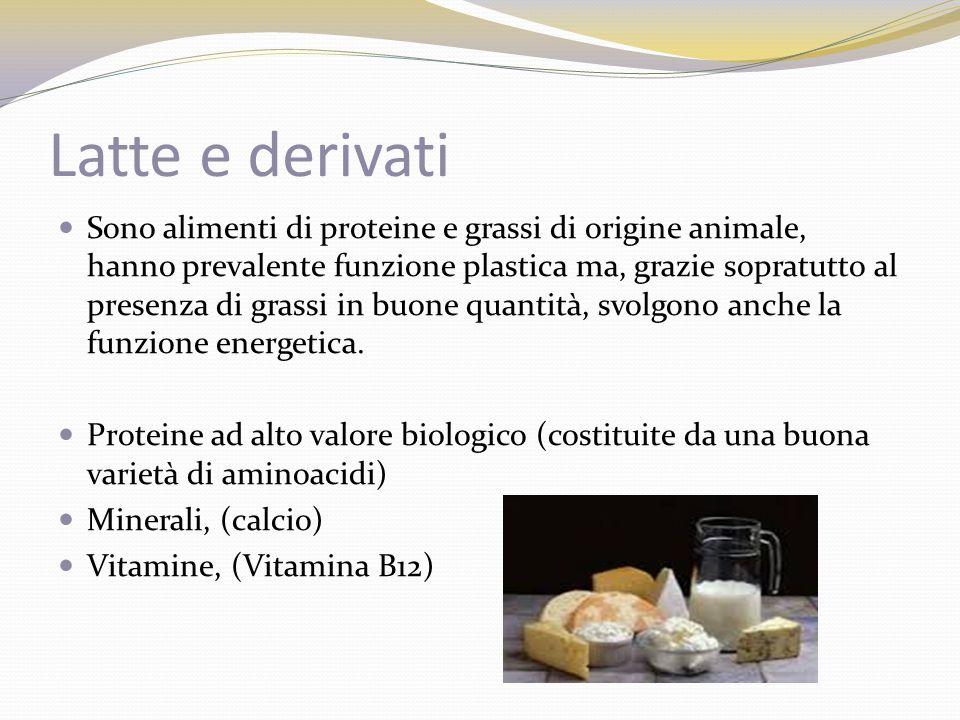 Latte e derivati Sono alimenti di proteine e grassi di origine animale, hanno prevalente funzione plastica ma, grazie sopratutto al presenza di grassi