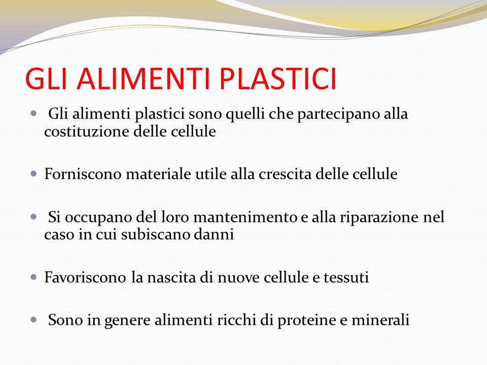 GLI ALIMENTI PLASTICI Gli alimenti plastici sono quelli che partecipano alla costituzione delle cellule Forniscono materiale utile alla crescita delle
