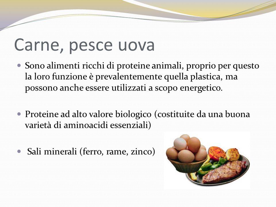 Carne, pesce uova Sono alimenti ricchi di proteine animali, proprio per questo la loro funzione è prevalentemente quella plastica, ma possono anche es