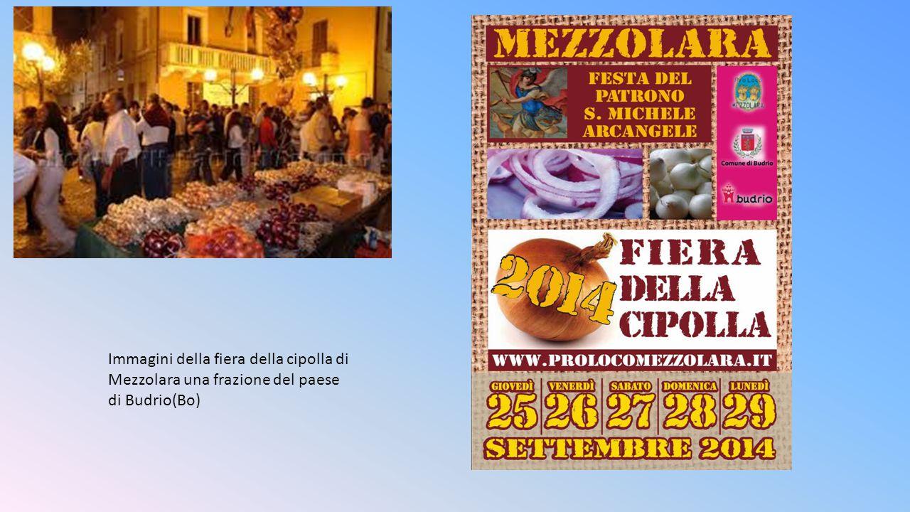 Immagini della fiera della cipolla di Mezzolara una frazione del paese di Budrio(Bo)