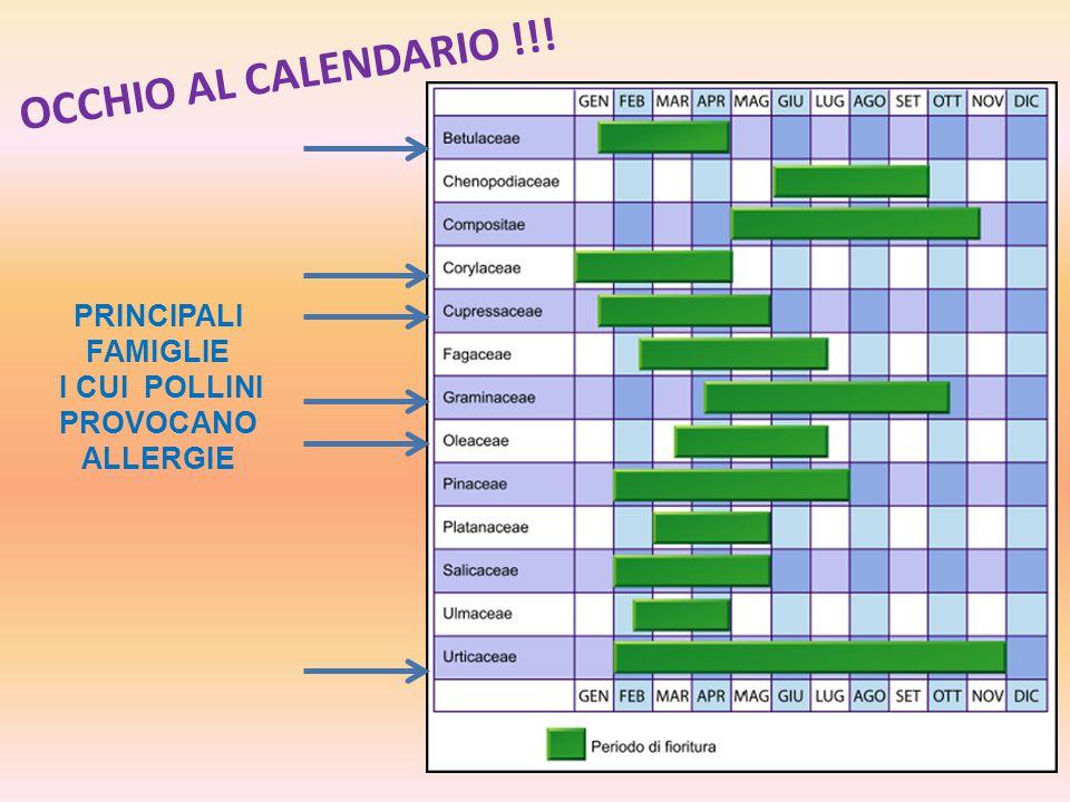 OCCHIO AL CALENDARIO !!! PRINCIPALI FAMIGLIE I CUI POLLINI PROVOCANO ALLERGIE