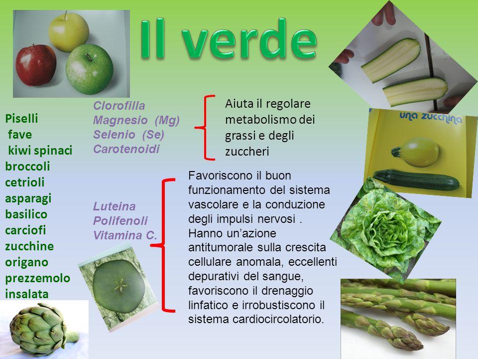 Piselli fave kiwi spinaci broccoli cetrioli asparagi basilico carciofi zucchine origano prezzemolo insalata Clorofilla Magnesio (Mg) Selenio (Se) Caro