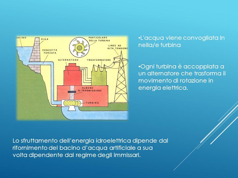L acqua viene convogliata in nella/e turbina Ogni turbina è accoppiata a un alternatore che trasforma il movimento di rotazione in energia elettrica.