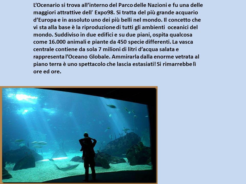 L'Ocenario si trova all'interno del Parco delle Nazioni e fu una delle maggiori attrattive dell' Expo98. Si tratta del più grande acquario d'Europa e