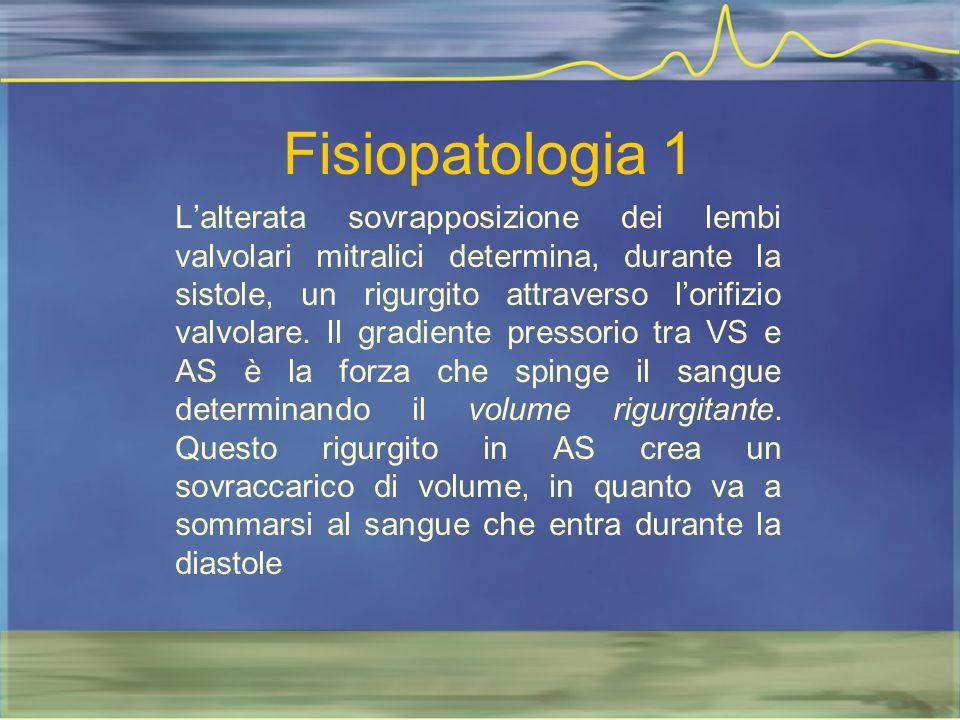 Fisiopatologia 1 L'alterata sovrapposizione dei lembi valvolari mitralici determina, durante la sistole, un rigurgito attraverso l'orifizio valvolare.