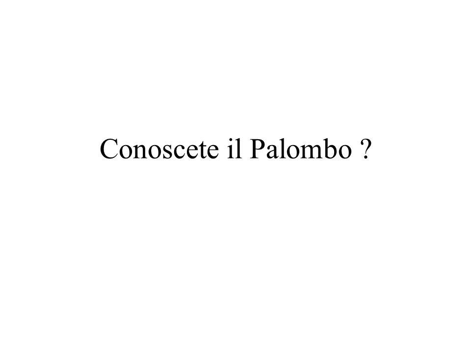 Conoscete il Palombo ?