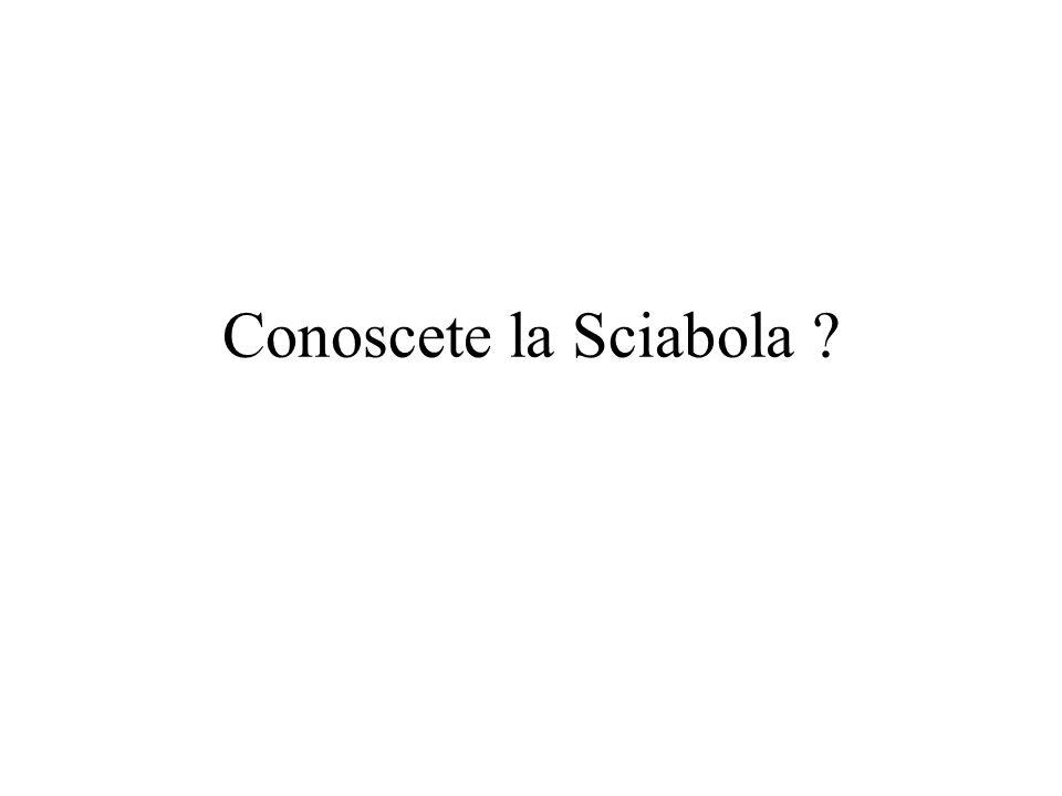 Conoscete la Sciabola ?