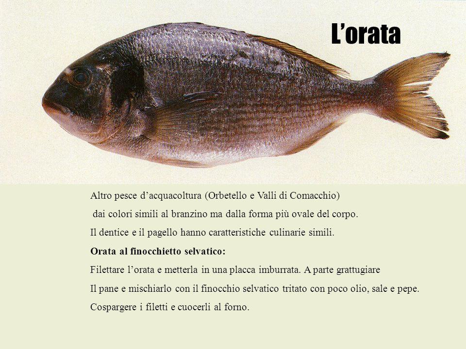 L'orata Altro pesce d'acquacoltura (Orbetello e Valli di Comacchio) dai colori simili al branzino ma dalla forma più ovale del corpo. Il dentice e il