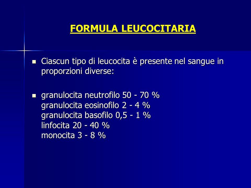 FORMULA LEUCOCITARIA Ciascun tipo di leucocita è presente nel sangue in proporzioni diverse: Ciascun tipo di leucocita è presente nel sangue in propor
