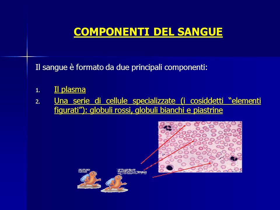 """COMPONENTI DEL SANGUE Il sangue è formato da due principali componenti: 1. 1. Il plasma 2. 2. Una serie di cellule specializzate (i cosiddetti """"elemen"""