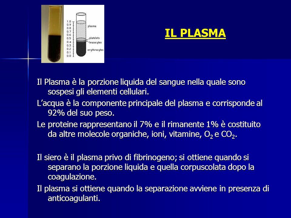 IL PLASMA Il Plasma è la porzione liquida del sangue nella quale sono sospesi gli elementi cellulari. L'acqua è la componente principale del plasma e