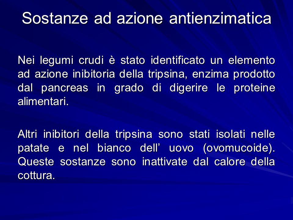 Sostanze ad azione antienzimatica Nei legumi crudi è stato identificato un elemento ad azione inibitoria della tripsina, enzima prodotto dal pancreas