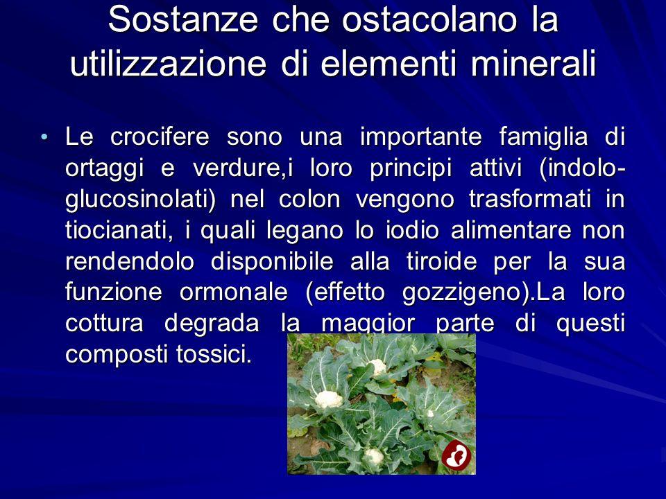 Sostanze che ostacolano la utilizzazione di elementi minerali Le crocifere sono una importante famiglia di ortaggi e verdure,i loro principi attivi (i