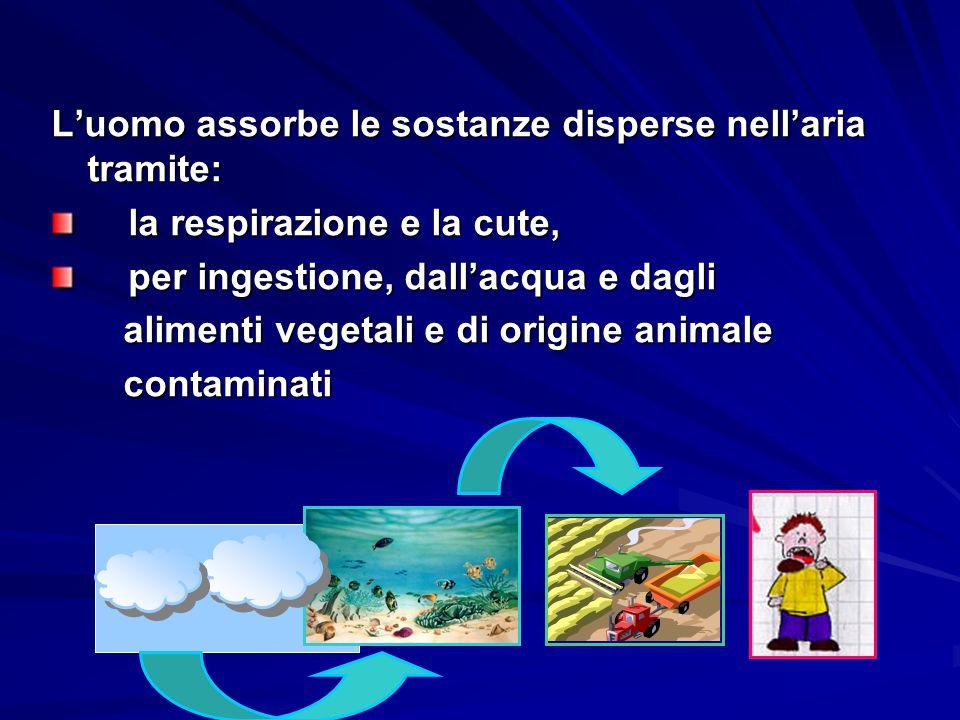 L'uomo assorbe le sostanze disperse nell'aria tramite: la respirazione e la cute, la respirazione e la cute, per ingestione, dall'acqua e dagli per in