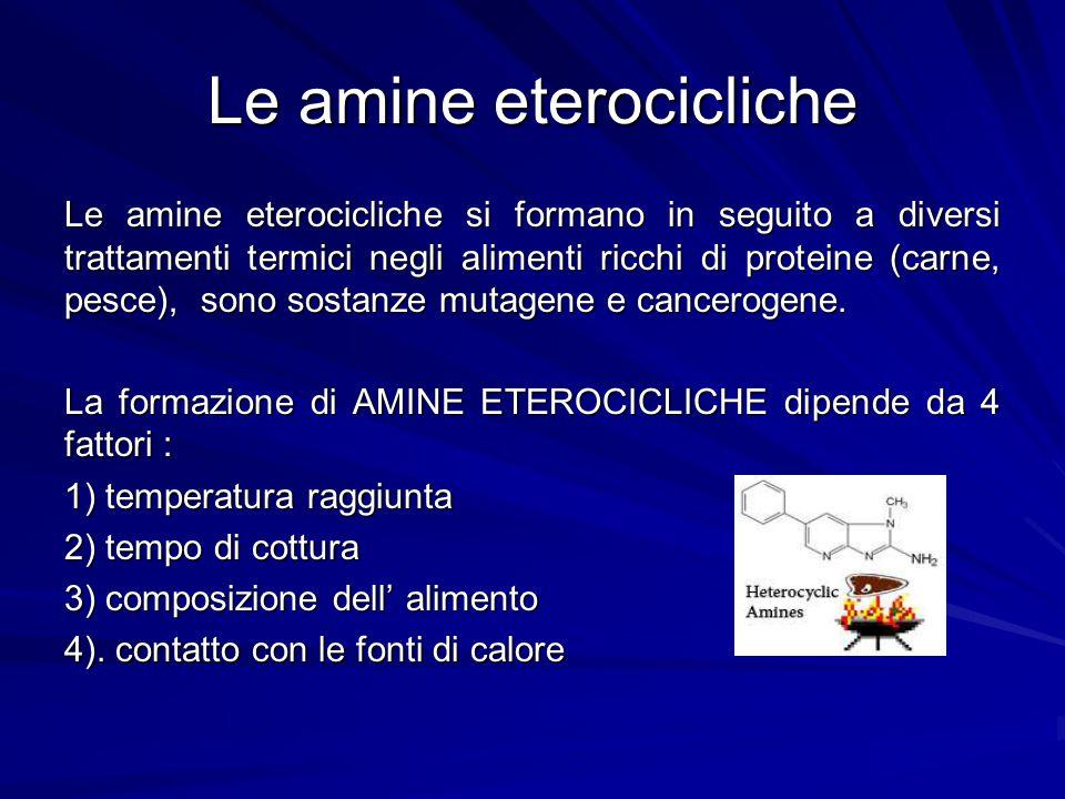 Le amine eterocicliche Le amine eterocicliche si formano in seguito a diversi trattamenti termici negli alimenti ricchi di proteine (carne, pesce), so