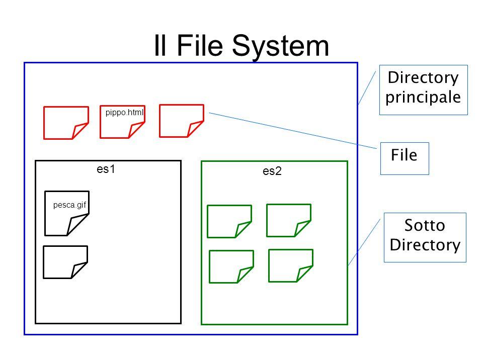 Il File System File Directory principale Sotto Directory es1 es2 pesca.gif pippo.html