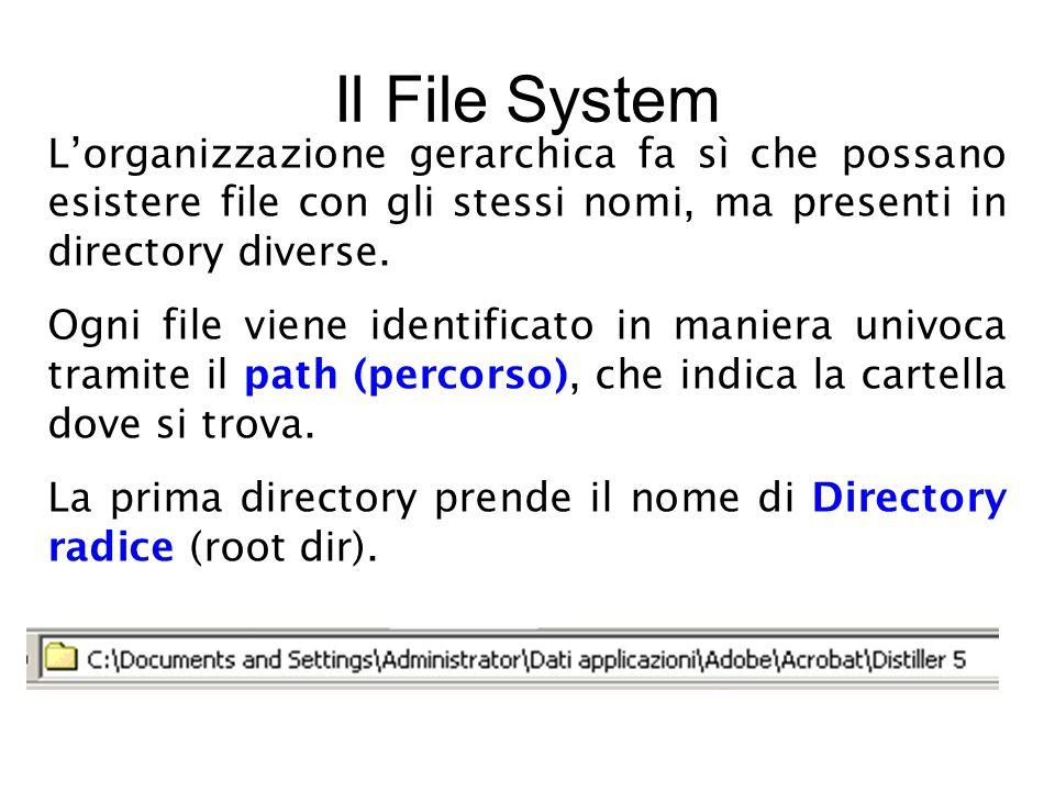 L'organizzazione gerarchica fa sì che possano esistere file con gli stessi nomi, ma presenti in directory diverse.