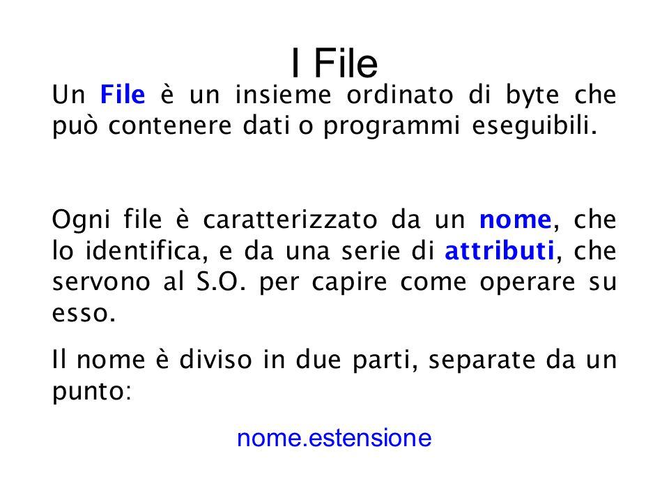 I File Un File è un insieme ordinato di byte che può contenere dati o programmi eseguibili.