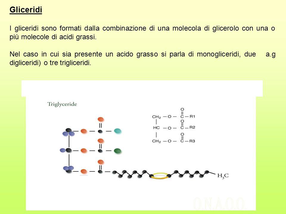 Gliceridi I gliceridi sono formati dalla combinazione di una molecola di glicerolo con una o più molecole di acidi grassi. Nel caso in cui sia present
