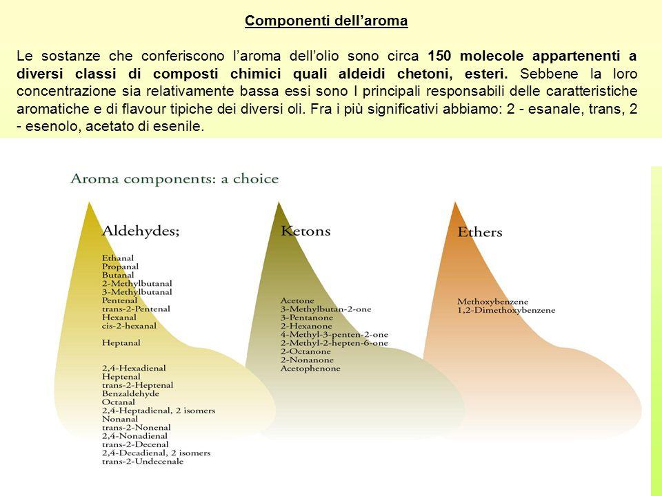Componenti dell'aroma Le sostanze che conferiscono l'aroma dell'olio sono circa 150 molecole appartenenti a diversi classi di composti chimici quali a