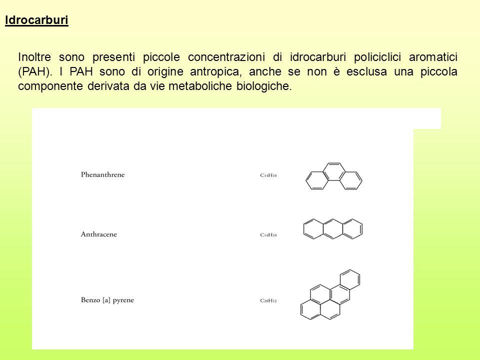 Inoltre sono presenti piccole concentrazioni di idrocarburi policiclici aromatici (PAH). I PAH sono di origine antropica, anche se non è esclusa una p