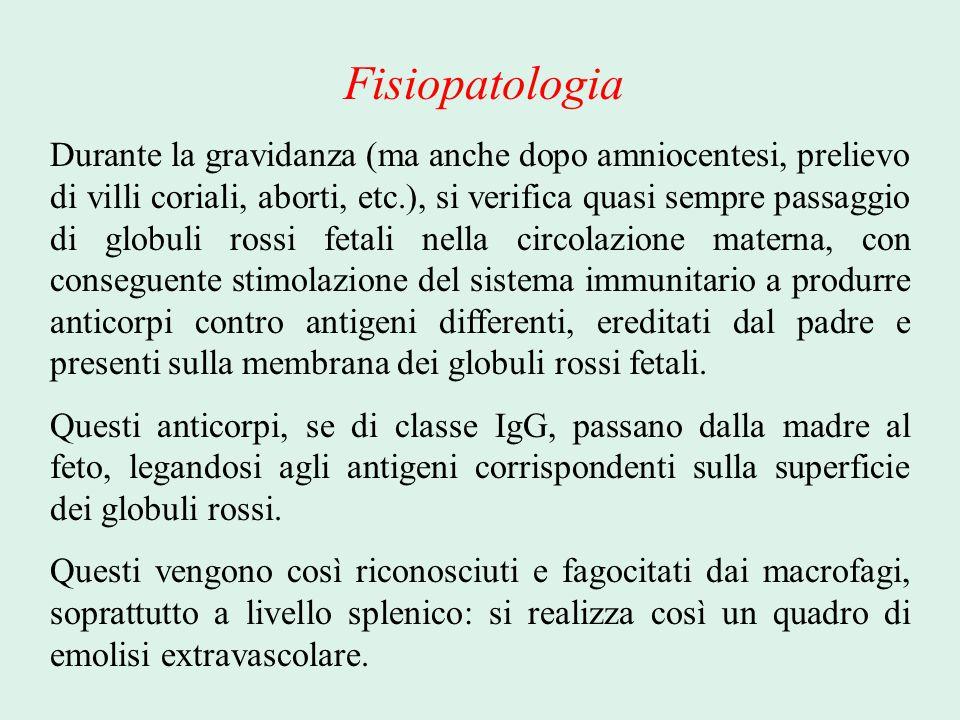 Fisiopatologia Durante la gravidanza (ma anche dopo amniocentesi, prelievo di villi coriali, aborti, etc.), si verifica quasi sempre passaggio di glob