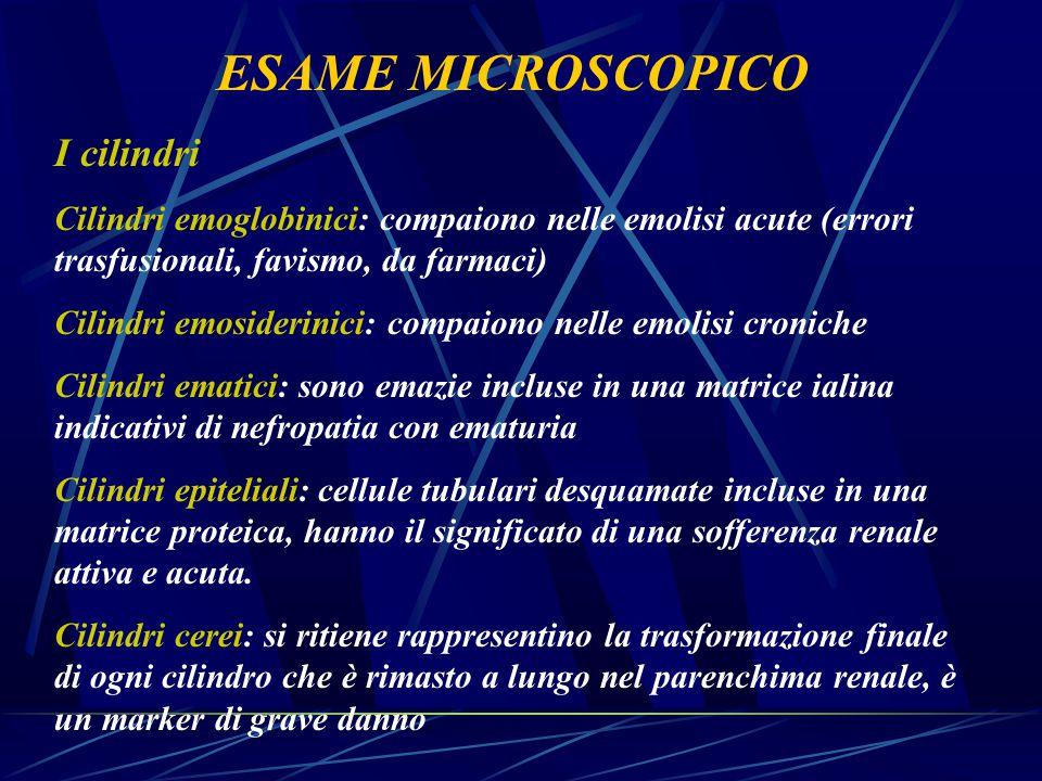 ESAME MICROSCOPICO I cilindri Cilindri emoglobinici: compaiono nelle emolisi acute (errori trasfusionali, favismo, da farmaci) Cilindri emosiderinici: