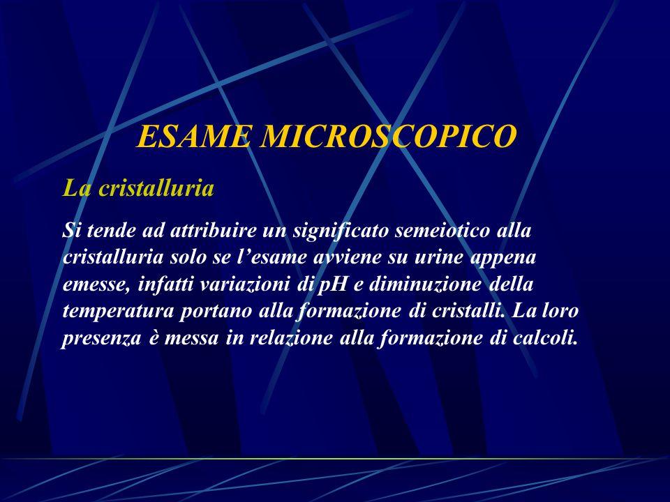 ESAME MICROSCOPICO La cristalluria Si tende ad attribuire un significato semeiotico alla cristalluria solo se l'esame avviene su urine appena emesse,