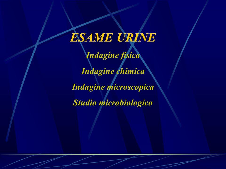 ESAME URINE Indagine fisica Indagine chimica Indagine microscopica Studio microbiologico