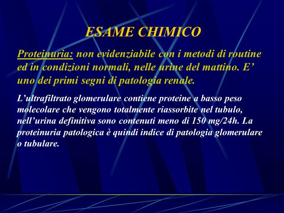 ESAME CHIMICO Proteinuria: non evidenziabile con i metodi di routine ed in condizioni normali, nelle urine del mattino. E' uno dei primi segni di pato