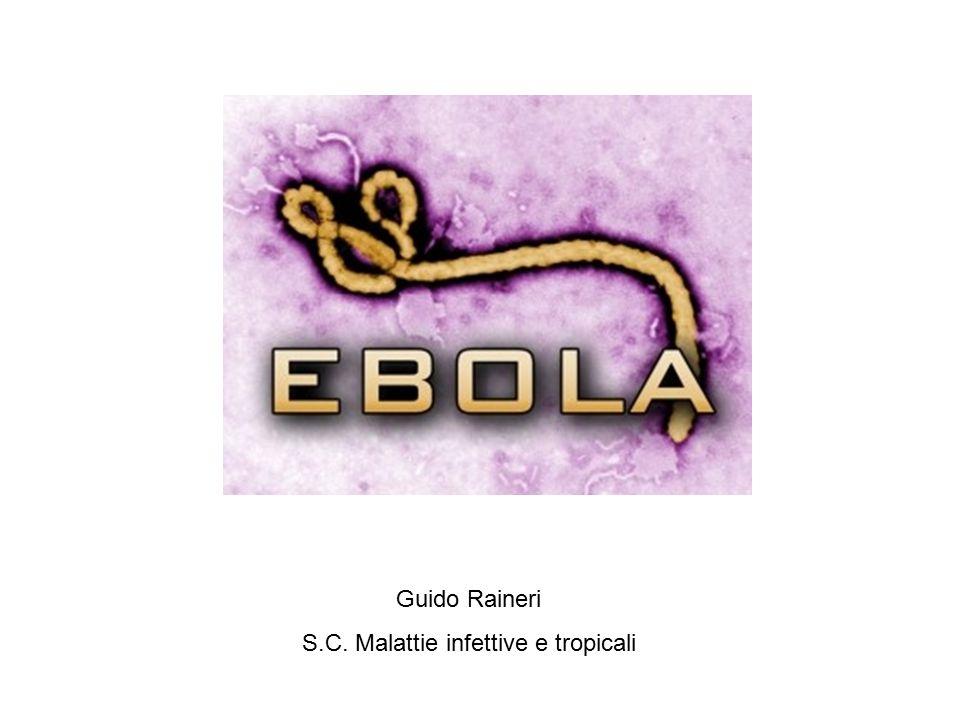 Virus Ebola Bundibugyo ebolavirus (Bdbv) Zaire ebolavirus (Ebov) Reston ebolavirus (Restv)- non umano Sudan ebolavirus (Sudv) Taї Forest ebolavirus (Tafv).