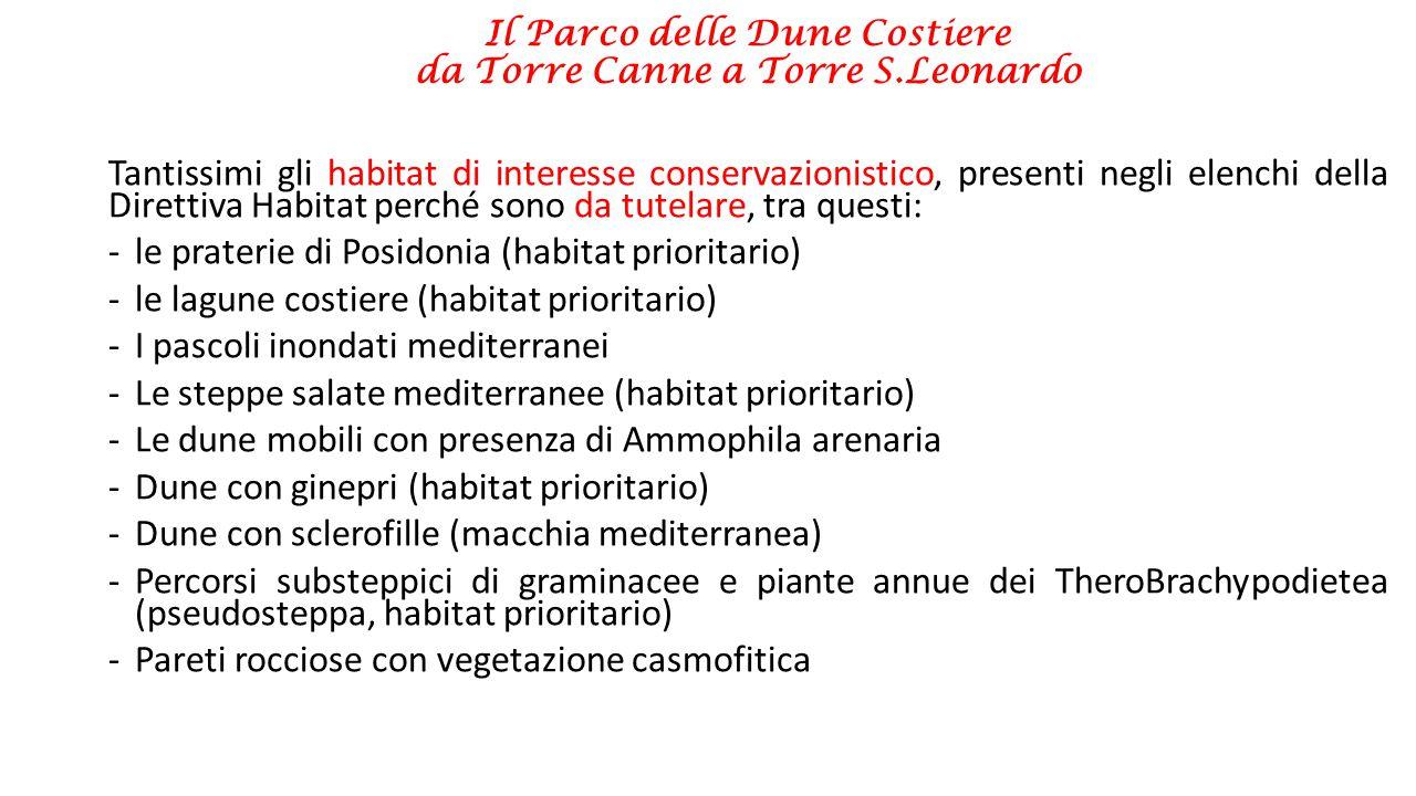 Il Parco delle Dune Costiere da Torre Canne a Torre S.Leonardo Tantissimi gli habitat di interesse conservazionistico, presenti negli elenchi della Di