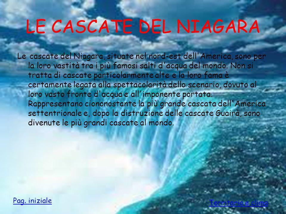 LE CASCATE DEL NIAGARA Le cascate del Niagara, situate nel nord-est dell'America, sono per la loro vastità tra i più famosi salti d'acqua del mondo. N