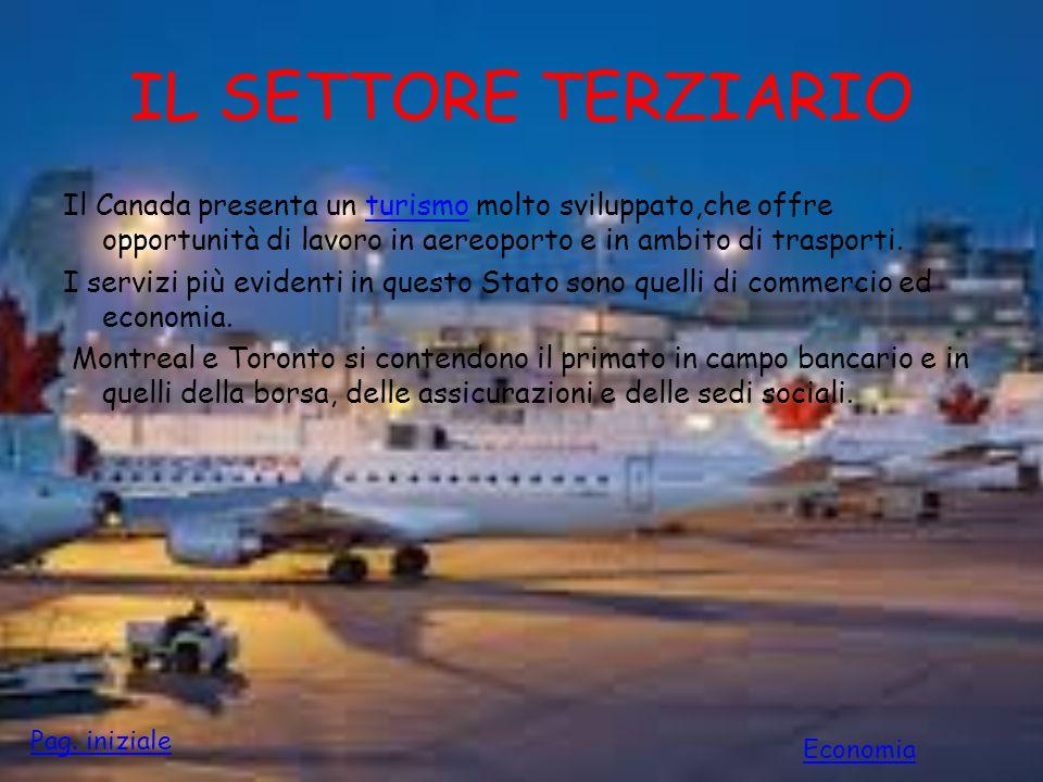 IL SETTORE TERZIARIO Il Canada presenta un turismo molto sviluppato,che offre opportunità di lavoro in aereoporto e in ambito di trasporti.turismo I s
