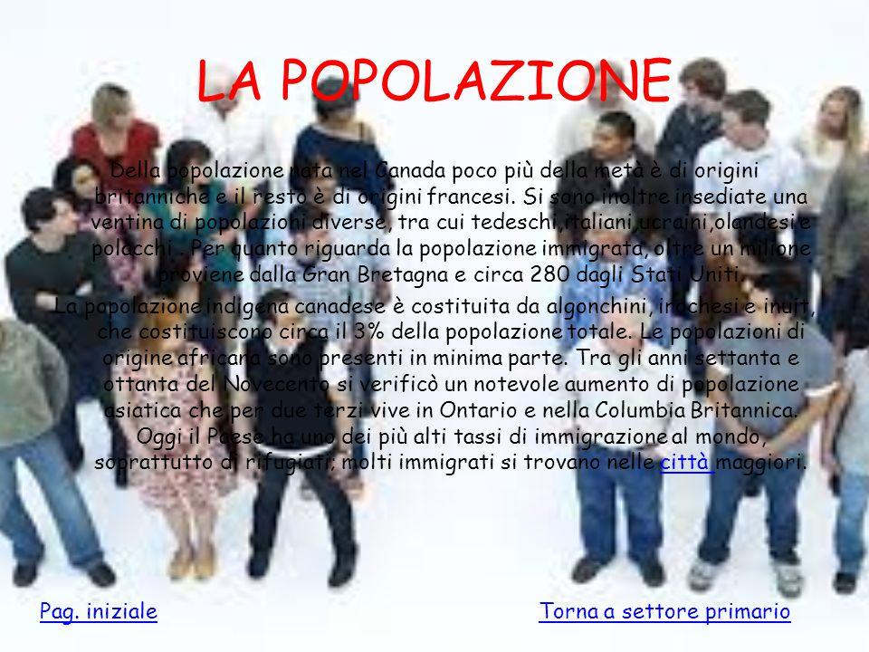 LA POPOLAZIONE Della popolazione nata nel Canada poco più della metà è di origini britanniche e il resto è di origini francesi. Si sono inoltre insedi