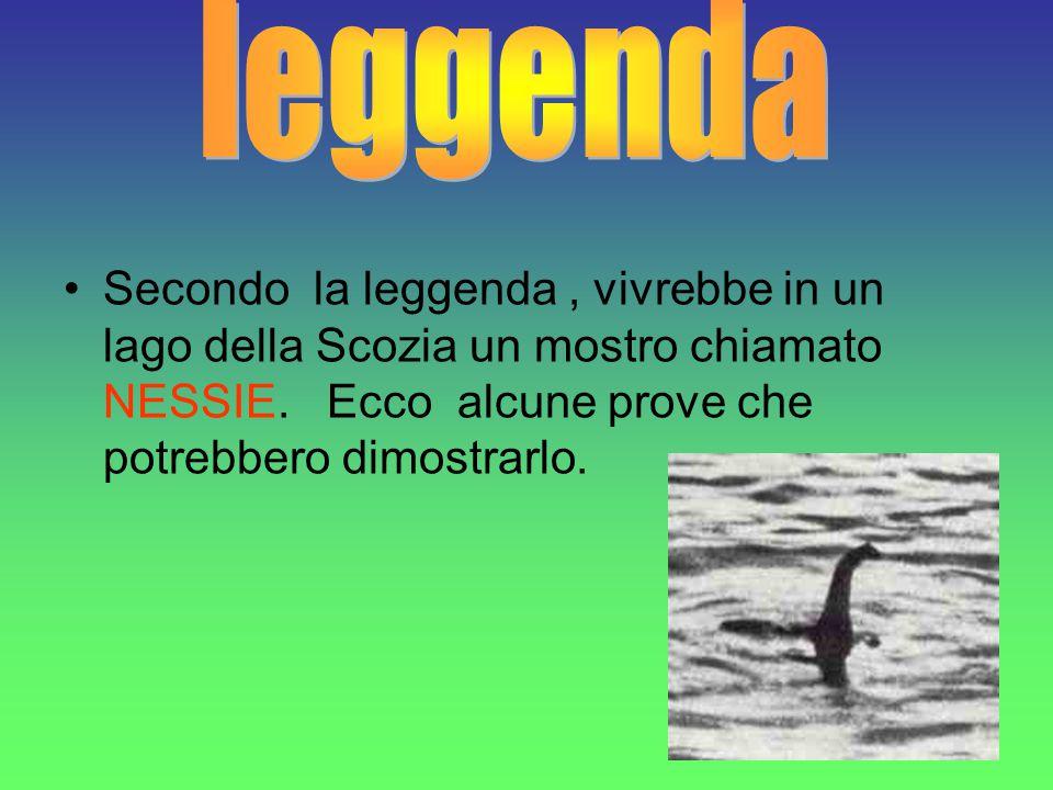 Secondo alcuni studiosi, è possibile che alcuni plesiosauri siano sopravvissuti fino a oggi, in questo lago.