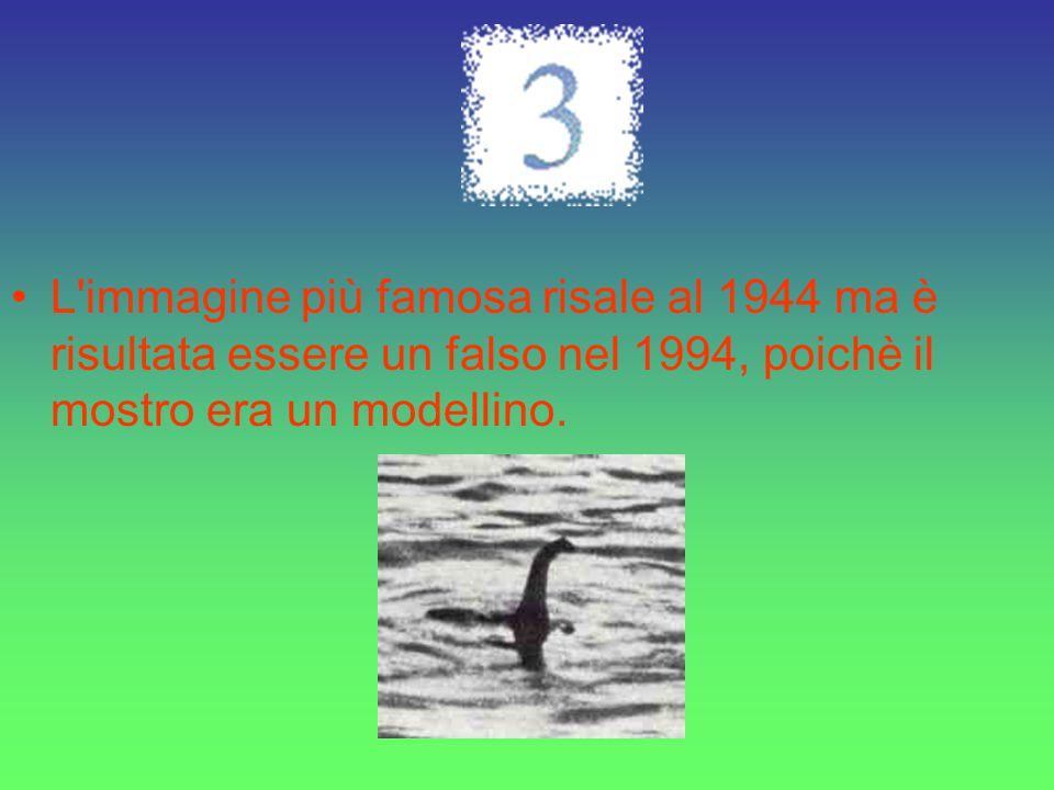 Un altra teoria: Loch Ness.Un elefante.