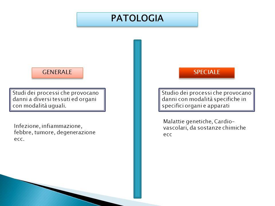 PATOLOGIA SPECIALE GENERALE Studi dei processi che provocano danni a diversi tessuti ed organi con modalità uguali. Infezione, infiammazione, febbre,